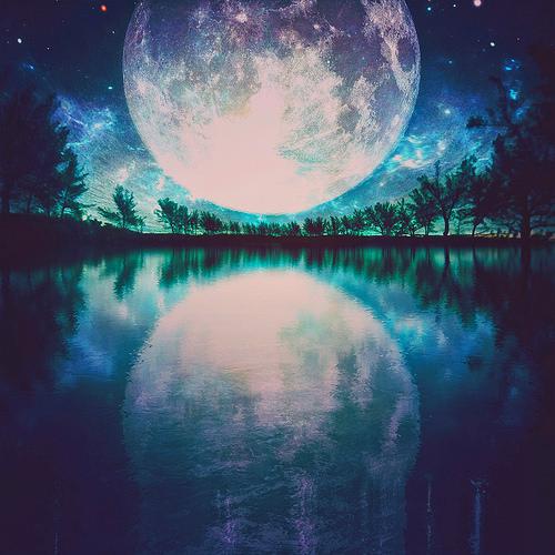 満月の招き猫